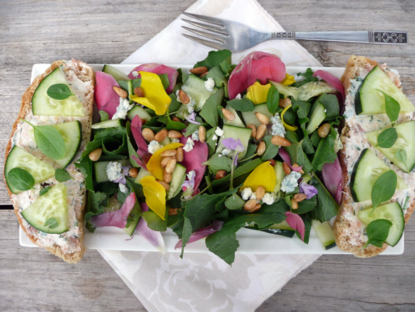 Tulip & Wild Violet Salad with Salmon Blue Cheese Cucumber Toast