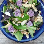 Chive Flower, Mushroom, White Bean & Walnut Salad