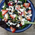 Red, White & Blueberry Salad with Goat Cheese & Toasted Pinons