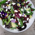 Mulberry, Goat Cheese & Avocado Salad with Pinons & Goat Cheese