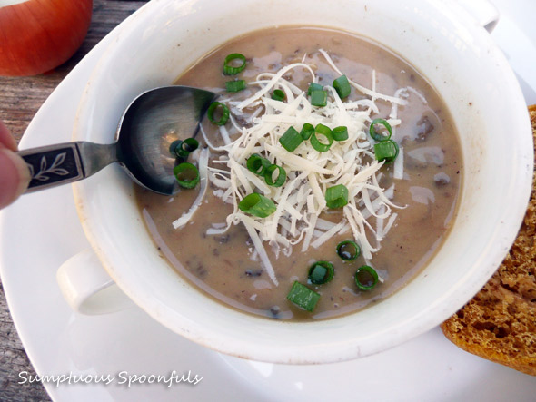 » Caramelized Onion Mushroom Gouda Soup Sumptuous Spoonfuls