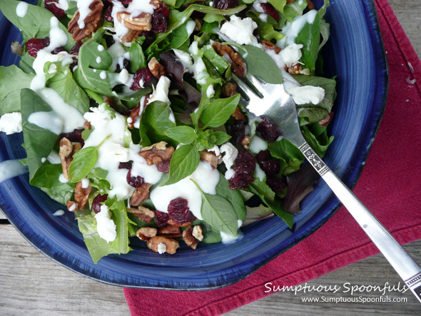 Cranberry Pecan Salad with Goat Cheese Crumbles & Ginger Yogurt Dressing