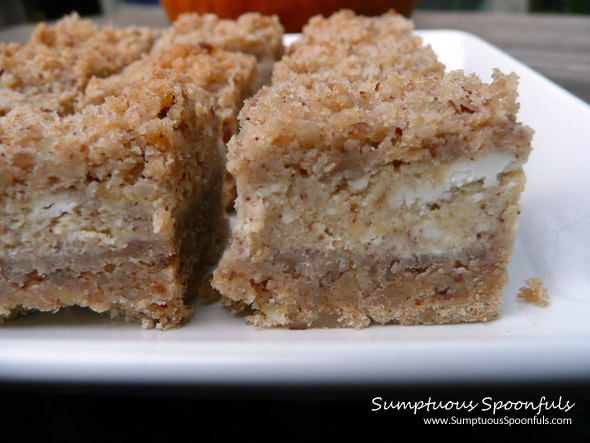 Crumb Topped Pumpkin Cheesecake Squares ~ Sumptuous Spoonfuls #pumpkin #cheesecake #recipe