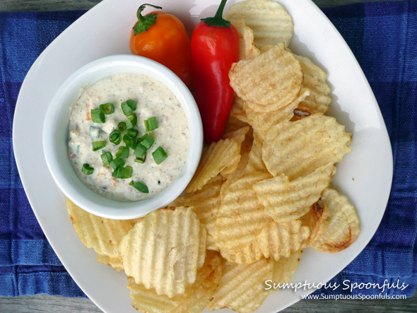 Dilly Bacon & Roasted Sweet Pepper Dip ~ from Sumptuous Spoonfuls #bacon #pepper #dip