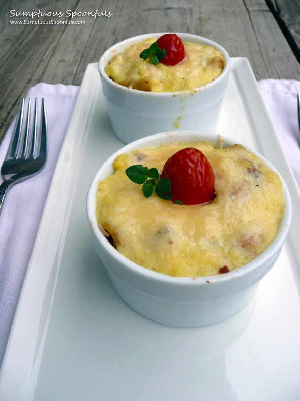 Greek Pastitio ~ Macaroni wrapped in a Meaty Spiced Tomato Sauce with Creamy Parmesan Bechamel on top ~ from Sumptuous Spoonfuls