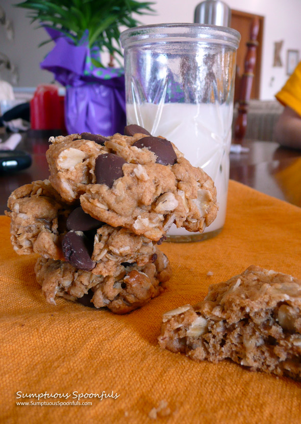 Peanut Butter Oatmeal Banana Chocolate Chip Cookies ~ Sumptuous Spoonfuls #cookie #recipe