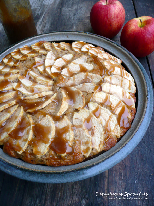 Apple Cake with Coconut Caramel Drizzle ~ Sumptuous Spoonfuls #apple #cake #recipe