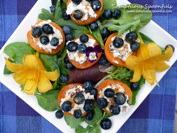 Honey Walnut Goat Cheese Apricots with Blueberries