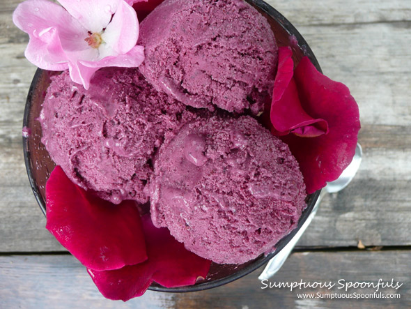 Lemon Berry Sherbet ~ Sumptuous Spoonfuls #sherbet #recipe