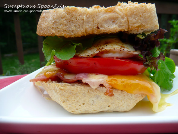 Smoked Cheddar & Gouda Breakfast BLT Sandwich ~ Sumptuous Spoonfuls #sandwich #recipe