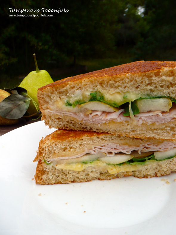 Smoky Grilled Turkey, Gouda & Pear Sandwich with Arugula ~ Sumptuous Spoonfuls #sandwich #recipe