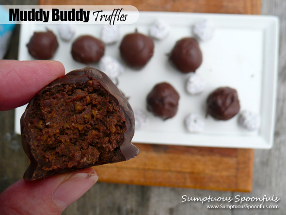 Muddy Buddy Truffles ~ Sumptuous Spoonfuls #puppy chow #truffles #recipe