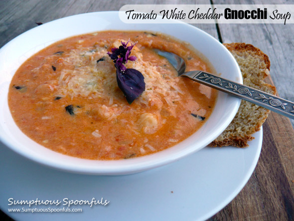 Tomato White Cheddar Gnocchi Soup Sumptuous Spoonfuls