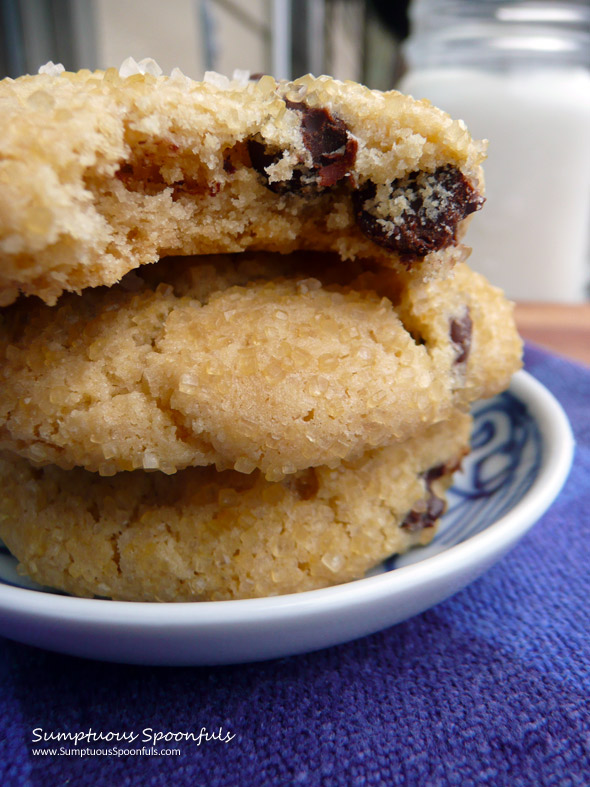 Crunchewy Salted Chocolate Chip Cookies {Gluten Free}