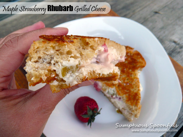 Maple Strawberry Rhubarb Grilled Cheese Sandwich ~ Sumptuous Spoonfuls #sweet #fruit #sandwich #recipe
