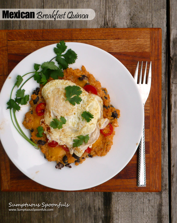 Mexican Breakfast Quinoa ~ Sumptuous Spoonfuls #healthy #quick #Mexican #breakfast