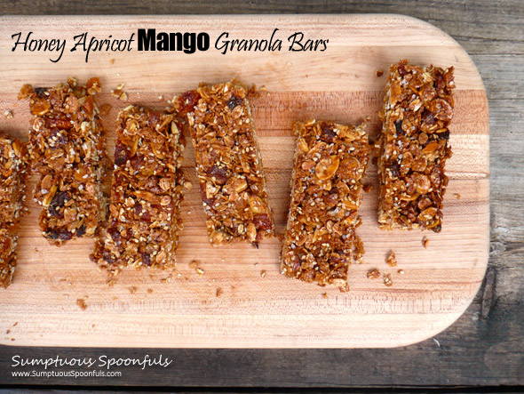 Honey Apricot Mango Granola Bars