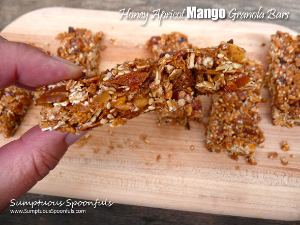 Honey Apricot Mango Granola Bars ~ Sumptuous Spoonfuls #easy #homemade #granola #bars #recipe