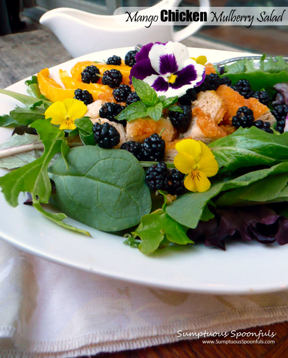 Mango Chicken Mulberry Salad with Mango Lavender Key Lime Yogurt Dressing ~ Sumptuous Spoonfuls #dinner #salad #recipe