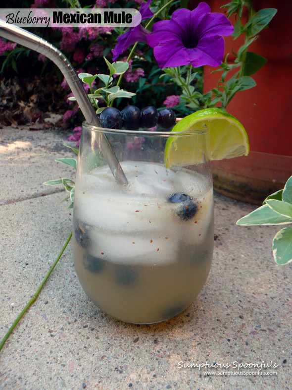 Blueberry Mexican Mule