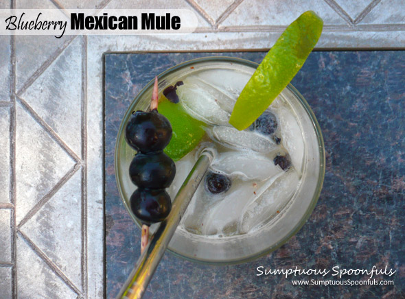 Blueberry Mexican Mule ~ Sumptuous Spoonfuls #blueberry #ginger #tequila #cocktail #recipe
