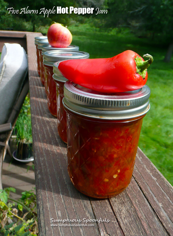 Five Alarm Apple Hot Pepper Jam ~ Sumptuous Spoonfuls #hot #sweet #apple #jalapeno #jam #recipe