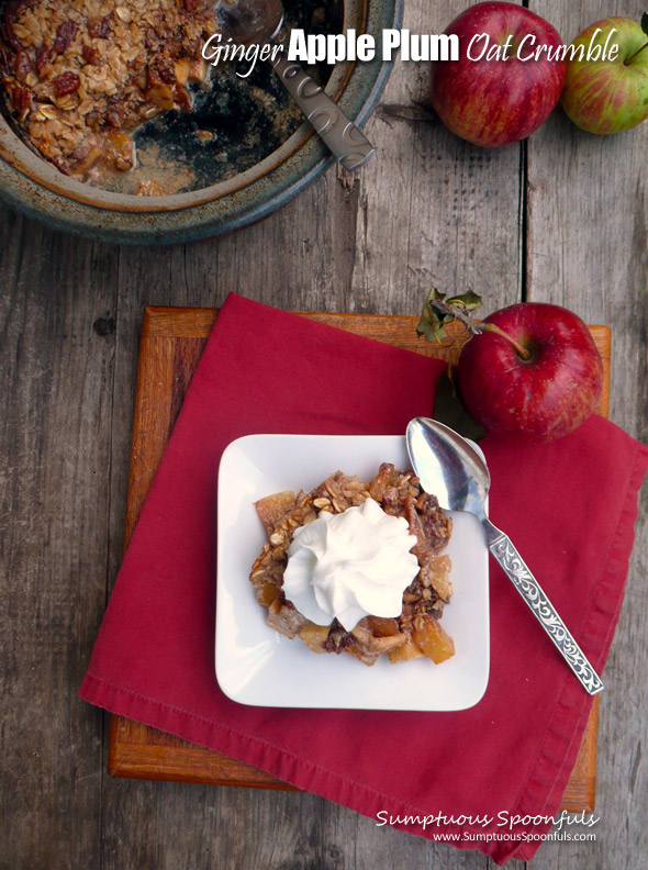 Ginger Apple Plum Oat Crumble ~ Sumptuous Spoonfuls #fruity #baked #oatmeal #recipe