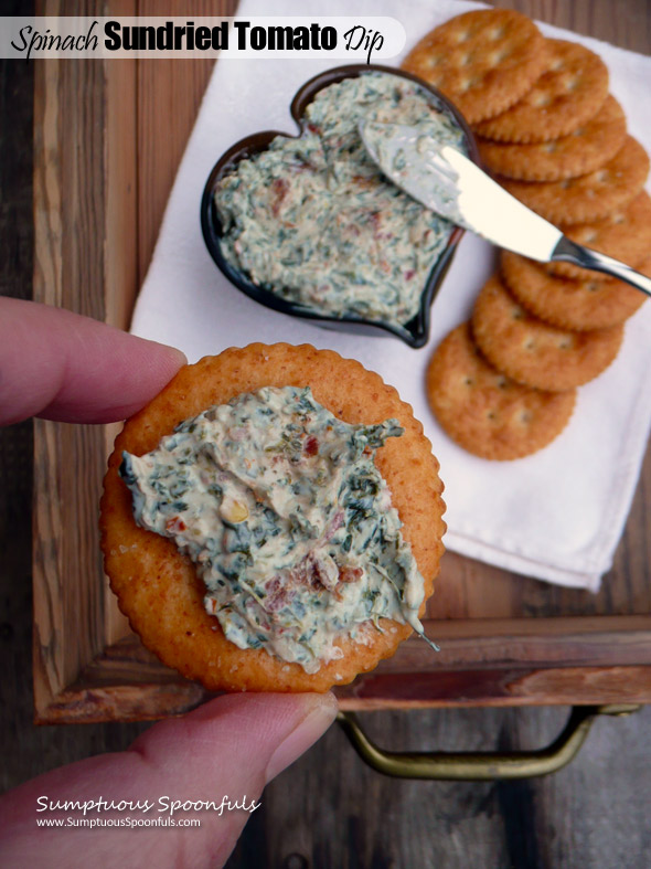 Spinach Sundried Tomato Dip ~ Sumptuous Spoonfuls #cheese #spread #dip #recipe