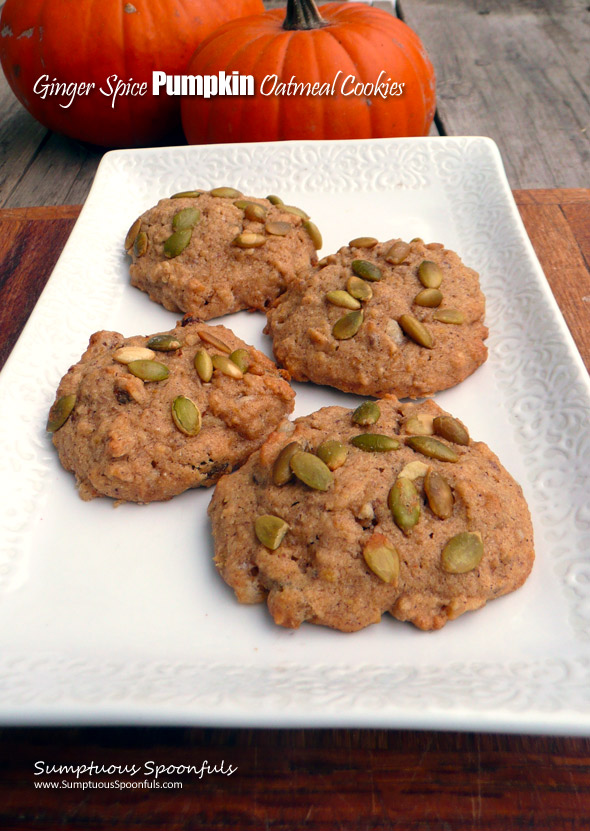 Ginger Spice Pumpkin Oatmeal Cookies ~ Sumptuous Spoonfuls #pumpkin #oat #spice #cookies #recipe