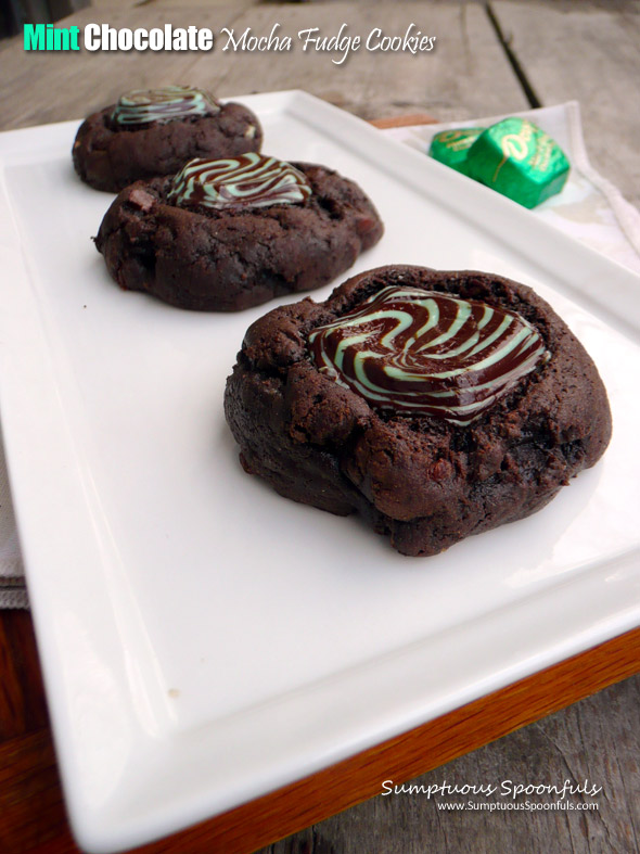 Mint Chocolate Mocha Fudge Cookies {Low Fat}