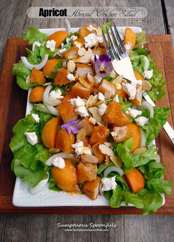 Apricot Almond Chicken Salad
