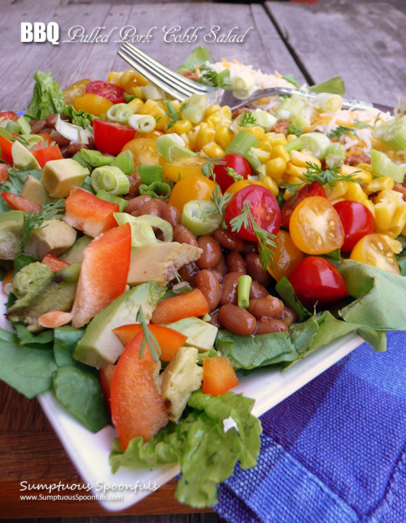 BBQ Pulled Pork Cobb Salad ~ Sumptuous Spoonfuls #barbecue #pork #dinner #salad #recipe