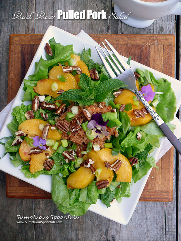 Peach Pecan Pulled Pork Salad with Smoky Chipotle BBQ Ranch Dressing ~ Sumptuous Spoonfuls #salad for #dinner #recipe