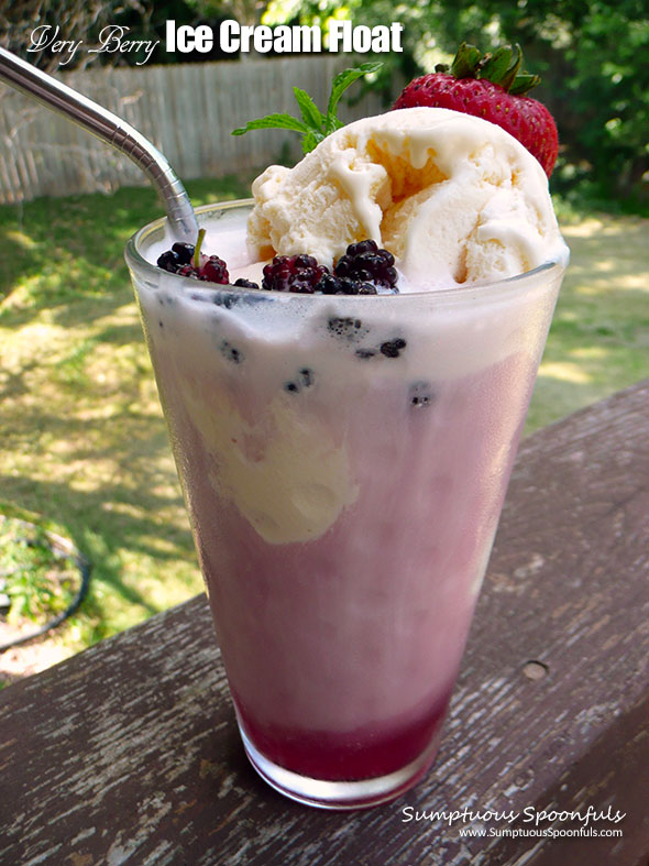 Very Berry Ice Cream Float ~ Sumptuous Spoonfuls #icecream #float #recipe