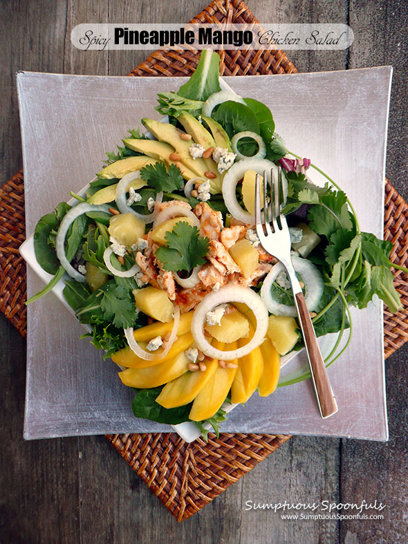 Spicy Pineapple Mango Chicken Salad with Fiery Roasted Pineapple Vinaigrette ~ Sumptuous Spoonfuls #tropical #hot #chicken #salad #recipe