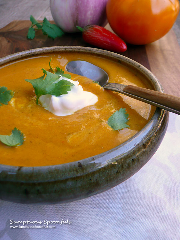Cardamom Curry Eggplant Tomato Soup Sumptuous Spoonfuls