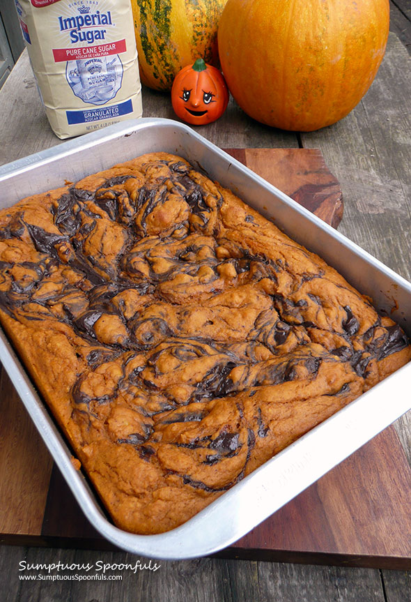 Pumpkin Cake with Chocolate Cheesecake Swirl ~ Sumptuous Spoonfuls #Choctoberfest #recipe