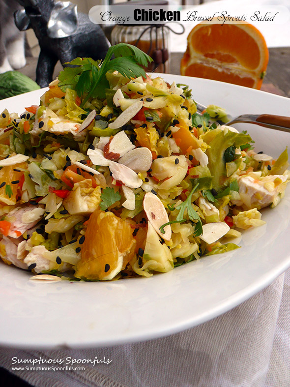 Asian Orange Chicken Brussel Sprouts Salad ~ Sumptuous Spoonfuls #chinese #chicken #salad #recipe