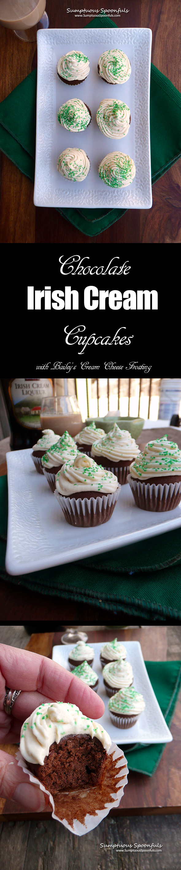 Chocolate Irish Cream Mini Cupcakes with Bailey's Cream Cheese Frosting ~ Sumptuous Spoonfuls #Irish #cake #recipe #StPatricksDay
