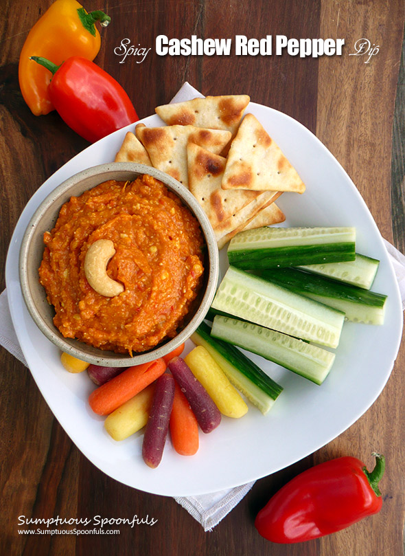 Spicy Cashew Red Pepper Dip ~ Sumptuous Spoonfuls #healthy #hot #pepper #dip #recipe