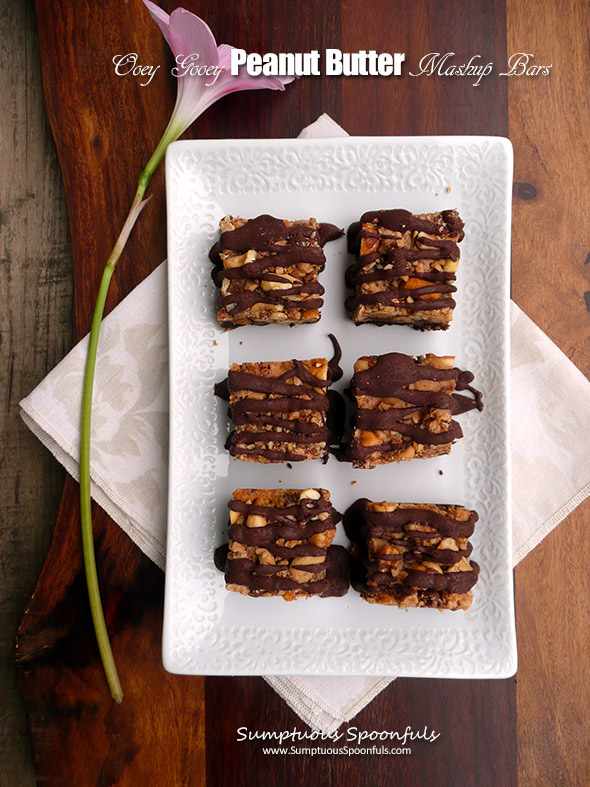 Kyr's Oooey Gooey Peanut Butter Mashup Bars ~ Sumptuous Spoonfuls #decadent #easy #chocolate #PB #recipe