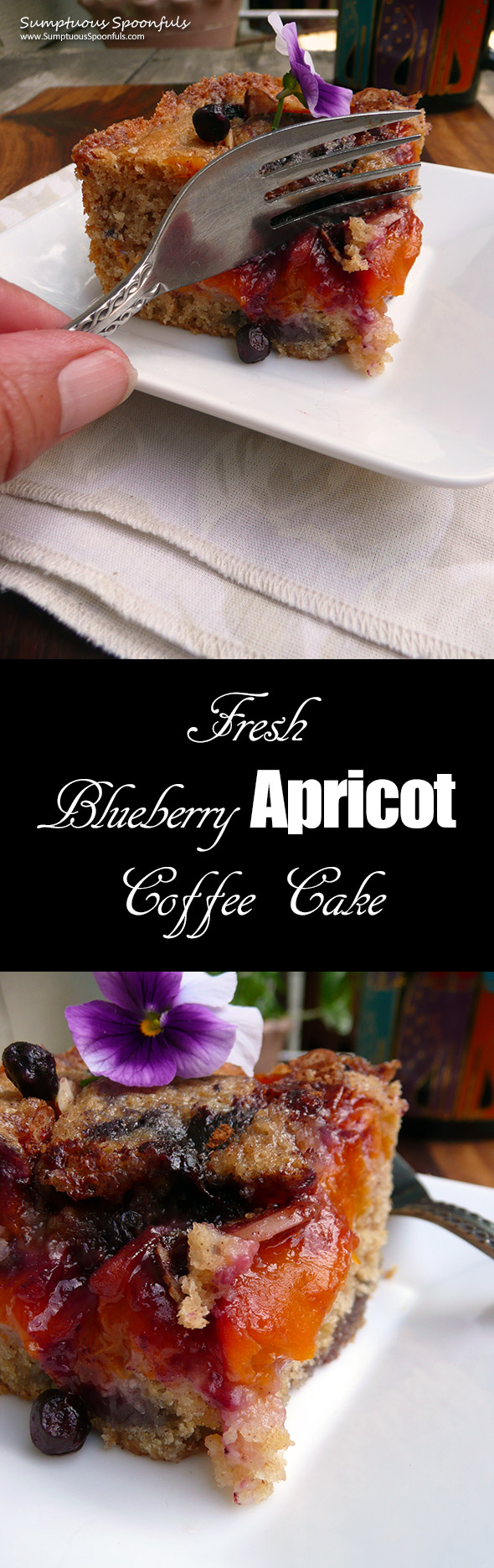 Blueberry Apricot Coffee Cake ~ Sumptuous Spoonfuls #easy #breakfast #cake #recipe