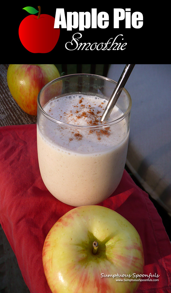 Apple Pie Smoothie ~ Sumptuous Spoonfuls #apple #pie #smoothie