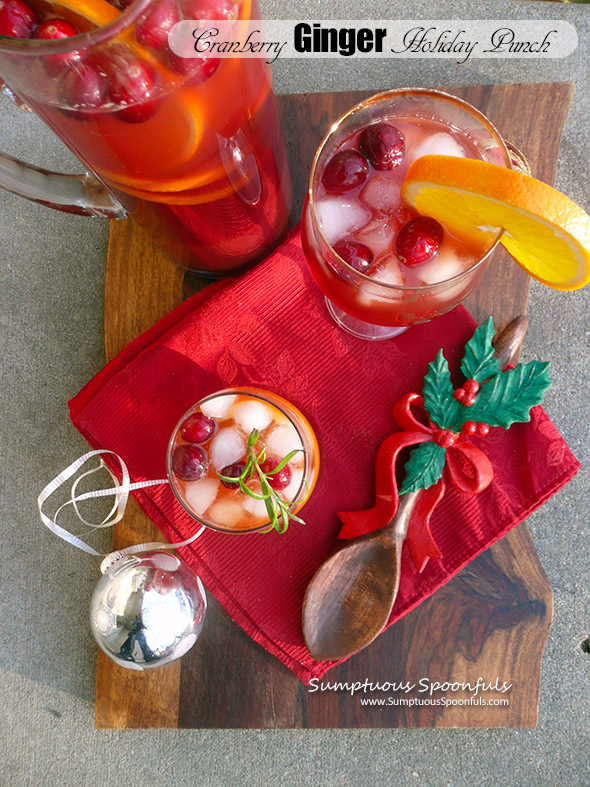 Cranberry Ginger Holiday Punch