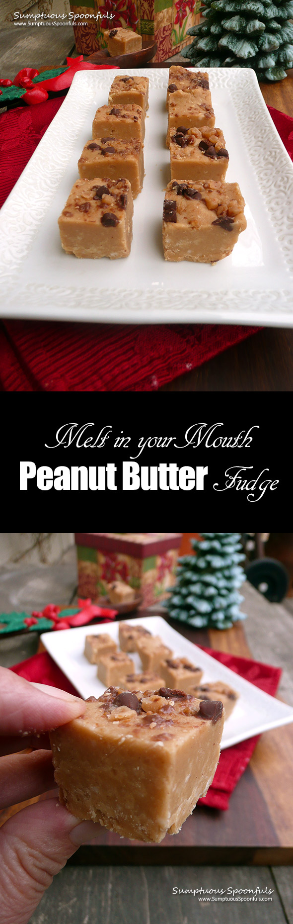 Melt in your Mouth Peanut Butter Fudge ~ Sumptuous Spoonfuls #peanutbutter #fudge #recipe