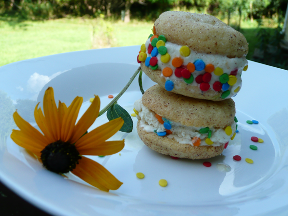 Ice cream sandwiches with Peach Banana Coconut Ice Cream