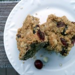 Cranberry White Chocolate Oatmeal Bars with Toasted Pecans