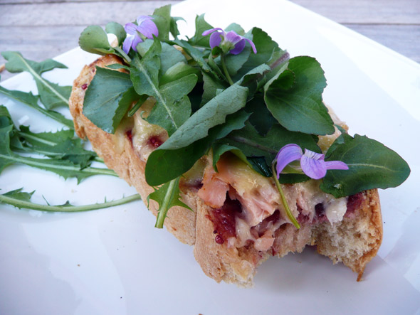 Raspberry Salmon Havarti Toast with Wild Greens