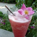 Watermelon Rosewater Slushies