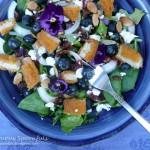 Blueberry Chicken Salad with Goat Cheese, Almonds & Cherry Malbec Vinaigrette